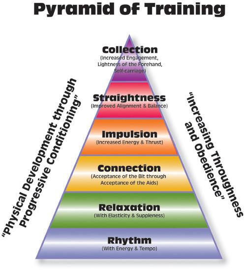 Training Pyramid