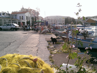 Report from Lesvos: endangered dignity. Autonomous living spaces fear eviction.