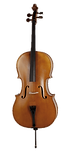 cello copy.png