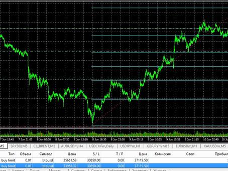 Сделка по Bitcoin (10.06.21)