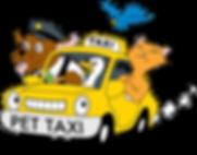 Pet taxi Bradford