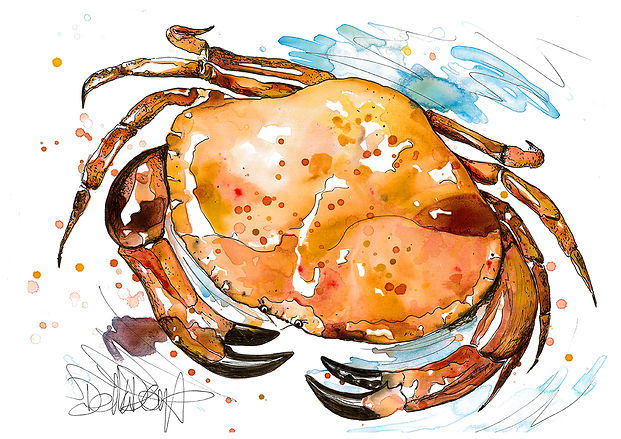 crab_001.jpg