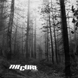 "The Cure: ""A Forest"" Walk Can Cure the Soul"