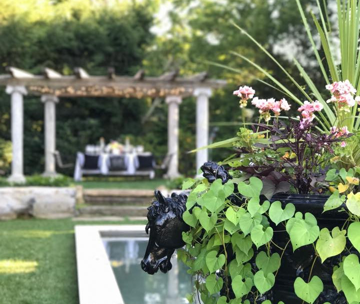 Horse planter and reflecting pool