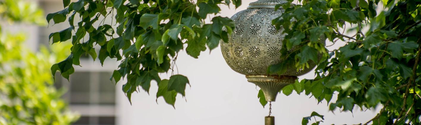 Garden GeneralLewisInnsndshoot-Presidio-