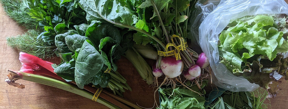 One Month CSA Share RESERVATION