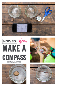 SheJumps Micro Venture: How to Make a Compass collage