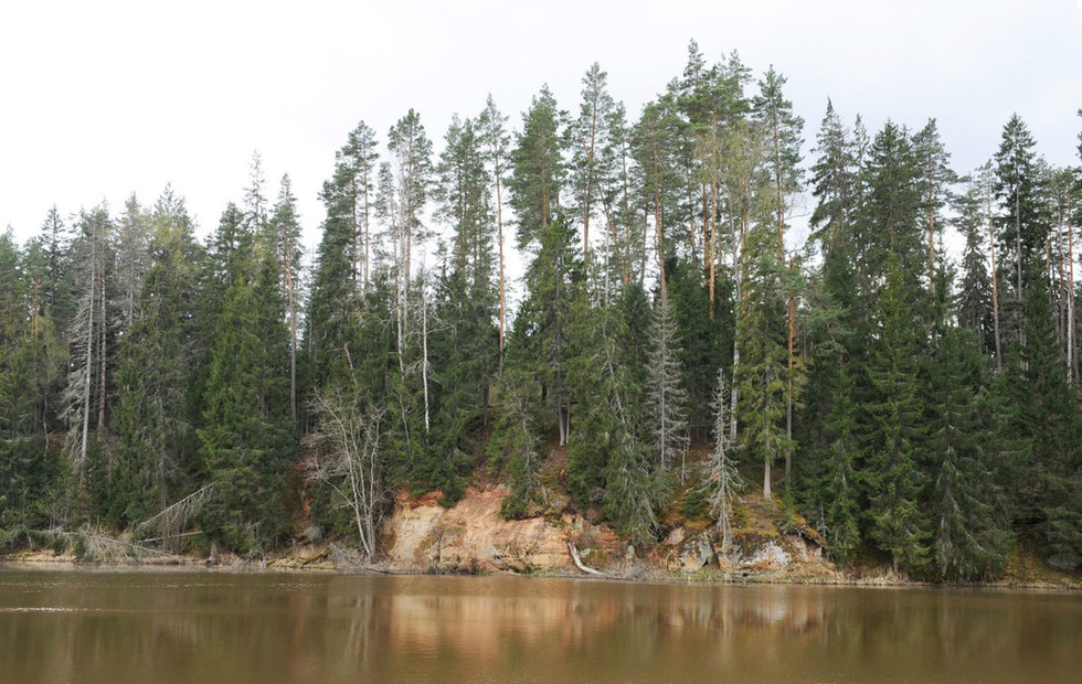 Mill's lake in 2010