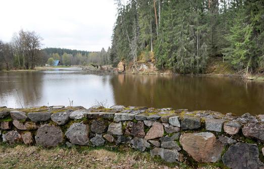 Озеро в 2010