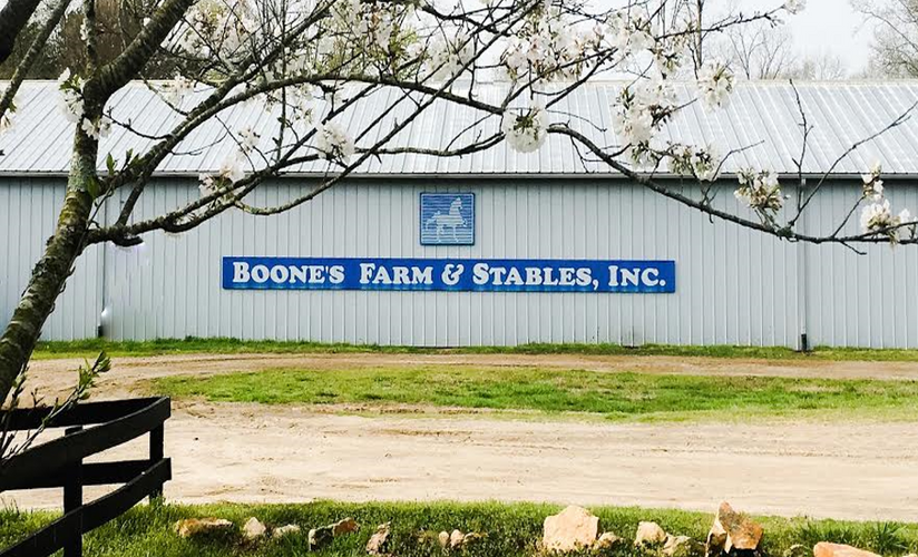 Spring time at Boone's Farm & Stables Photo