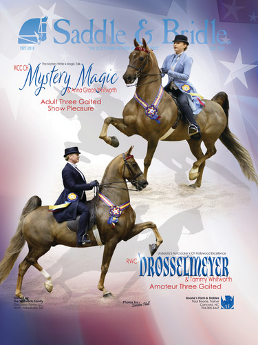 Drosselmeyer and Mystery Magic Saddle & Bridle July 2018 Cover