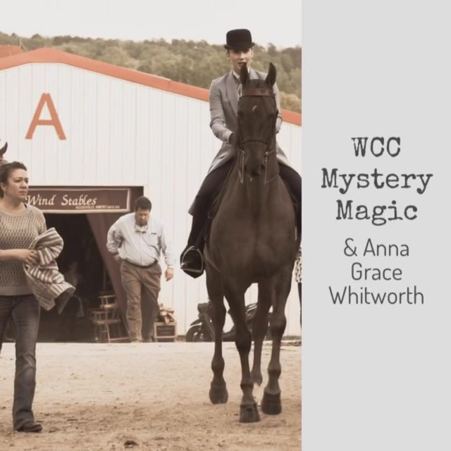 JD Massey Horse Show Video Recap