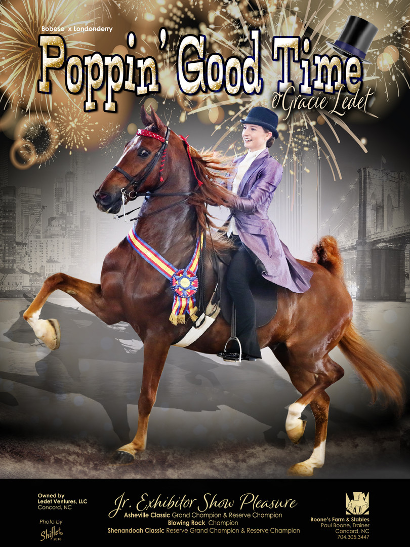 Poppin' Good Time and Gracie Ledet Show Horse Magazine Ad