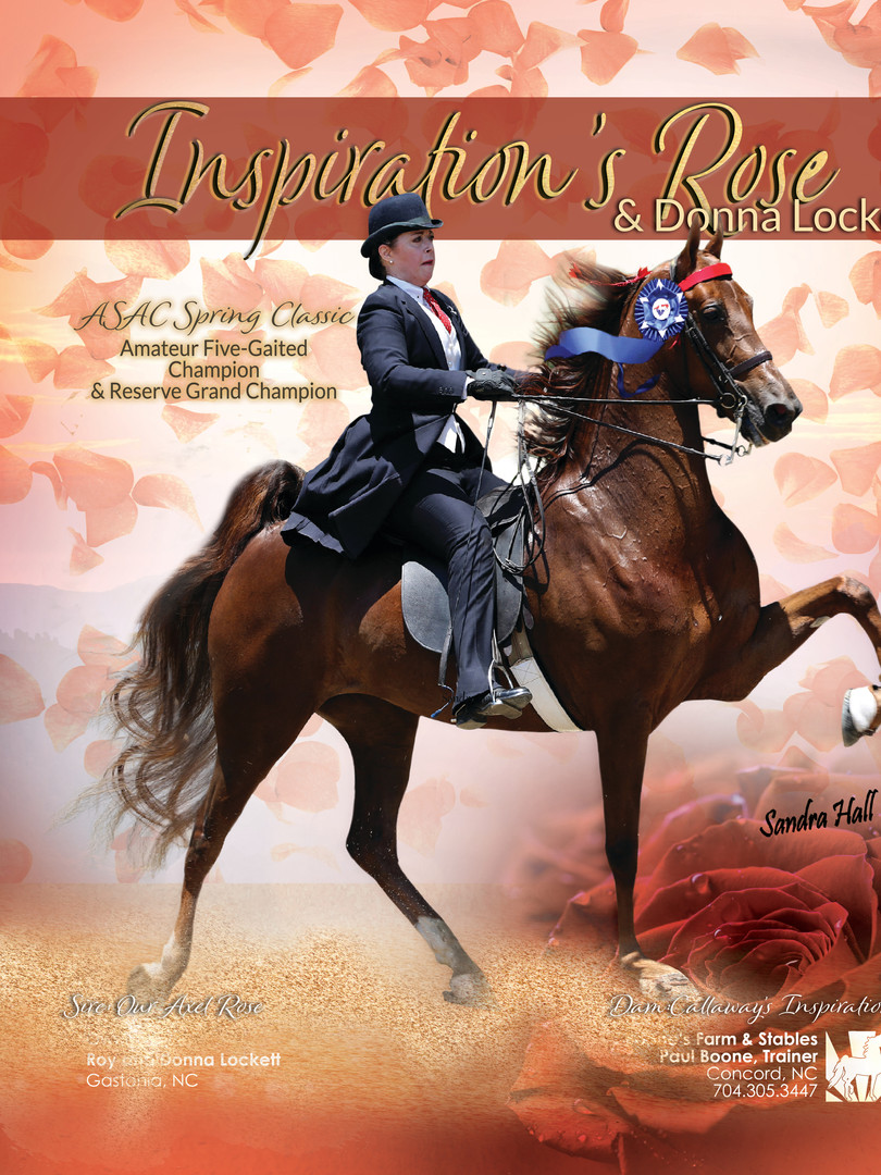 Inspiration's Rose and Donna Lockett Saddle Horse Report Ad