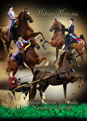 Boone's Lead in Page for National Horseman 2018 Louisville
