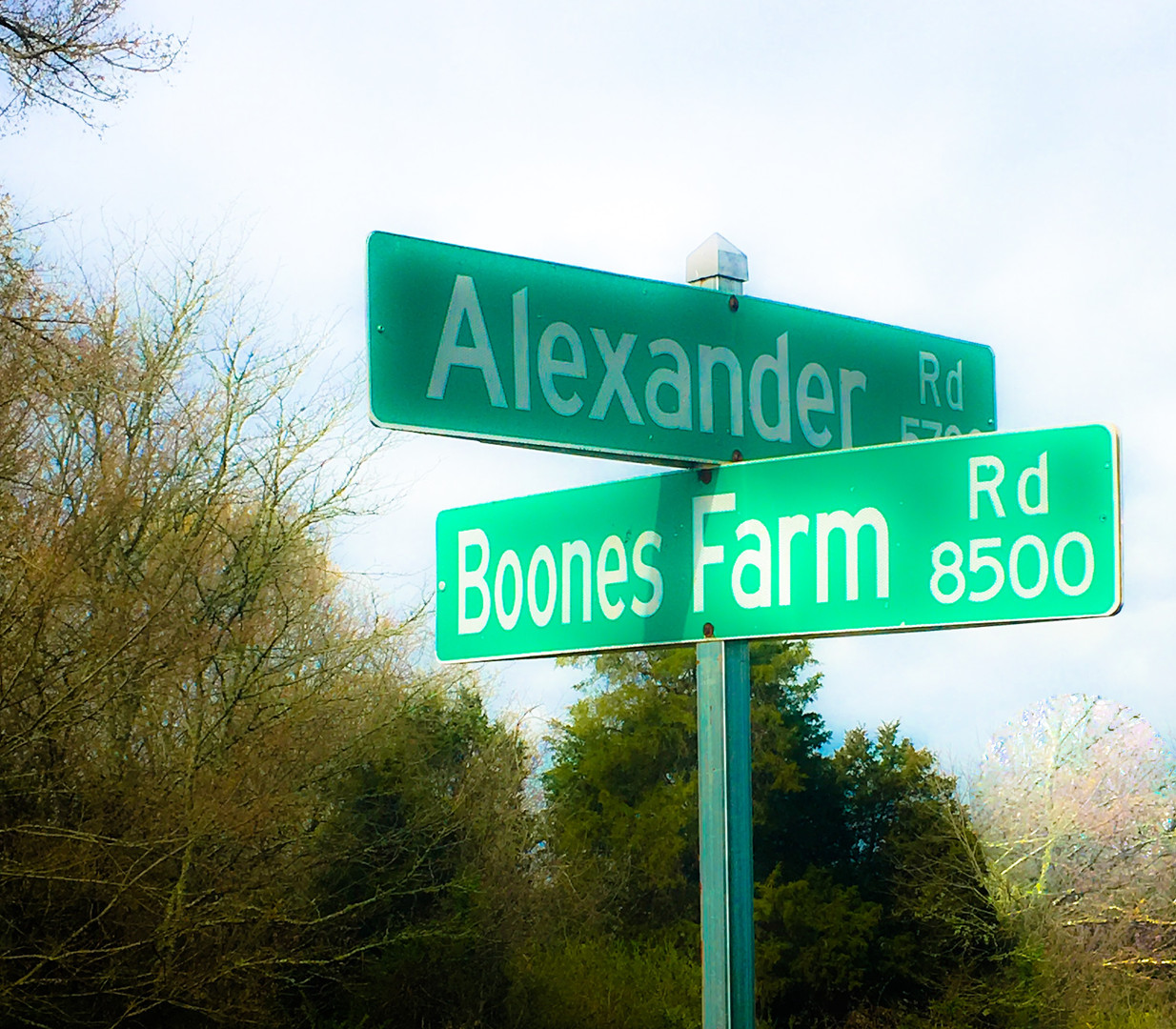Boone's Farm & Stables Sign