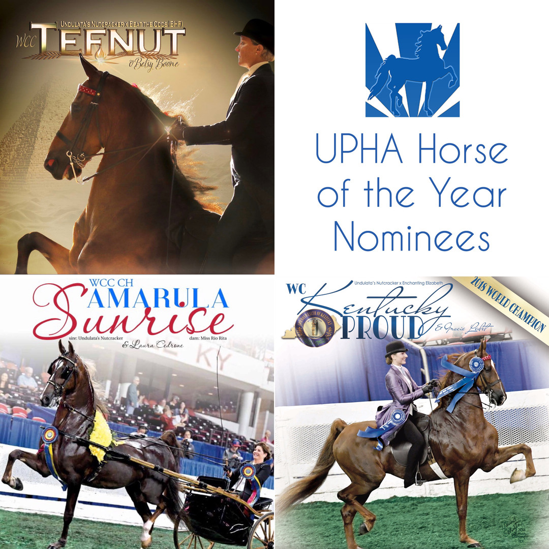 Promote UPHA Horse of the Year Nominees