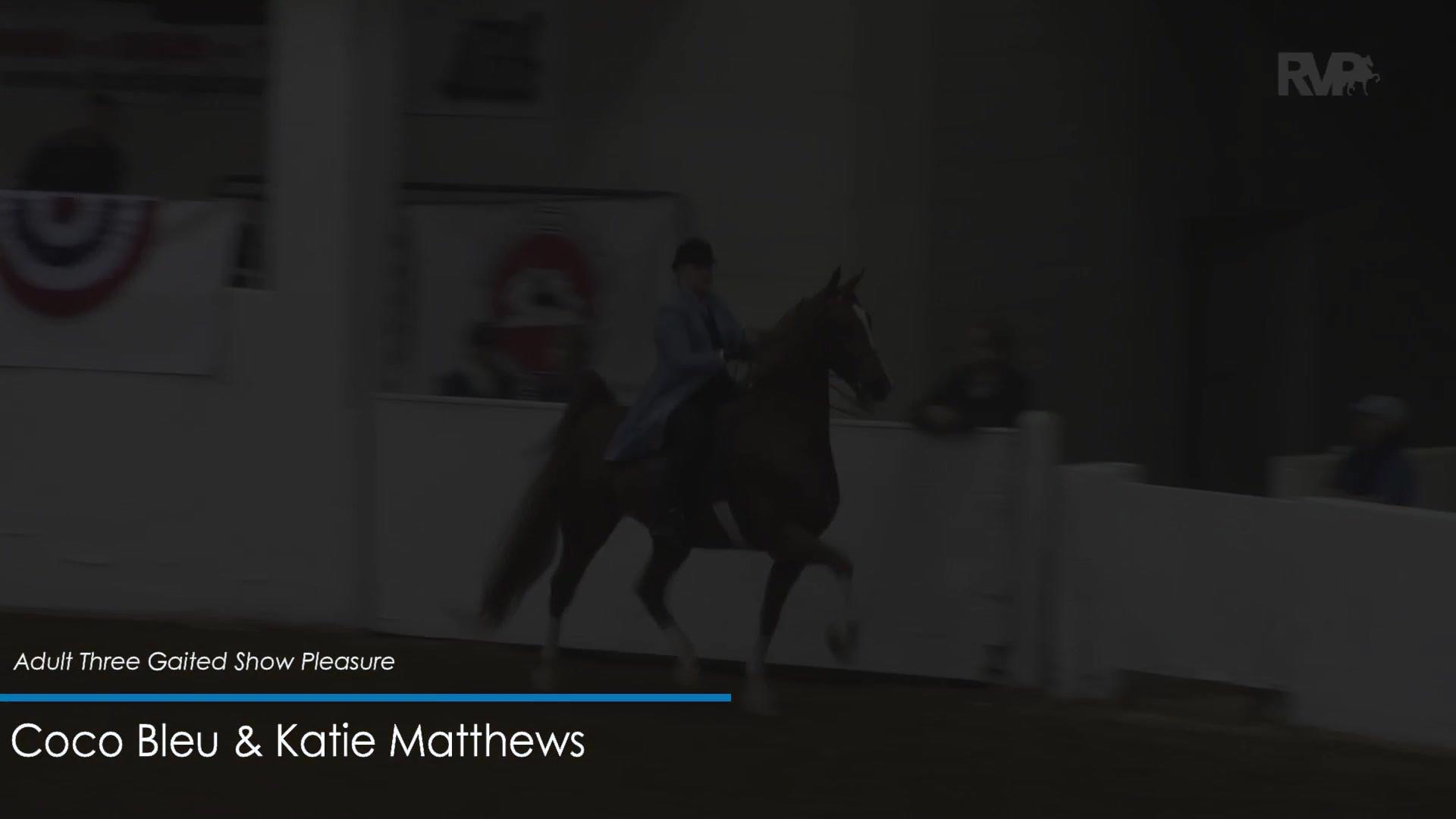 2018 ASHAV Horse Show Recap