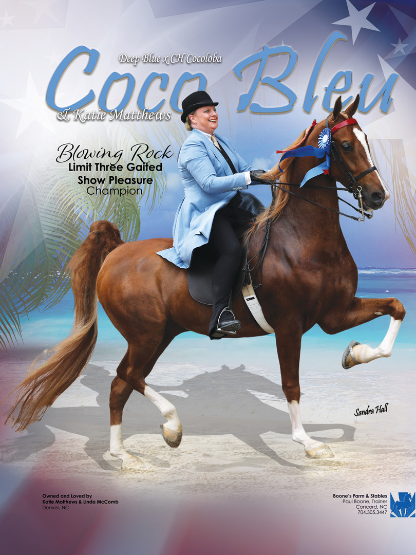 Coco Bleu and Katie Matthews Saddle & Bridle Ad