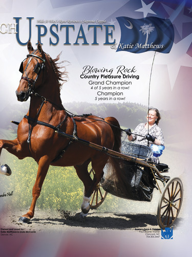 CH Upstate and Katie Matthews Saddle & Bridle Ad
