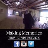 Experience the Road Pony