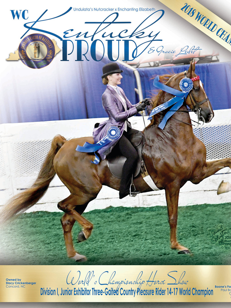 WC Kentucky Proud Saddle Horse Report Digital Ad