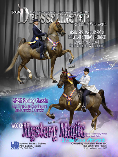 Drosselmeyer and Mystery Magic Show Horse Magazine Ad