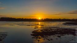 Séné_Morbihan-Loewen_photographie_(1)