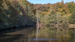 automne-4saisons-Loewen photographie