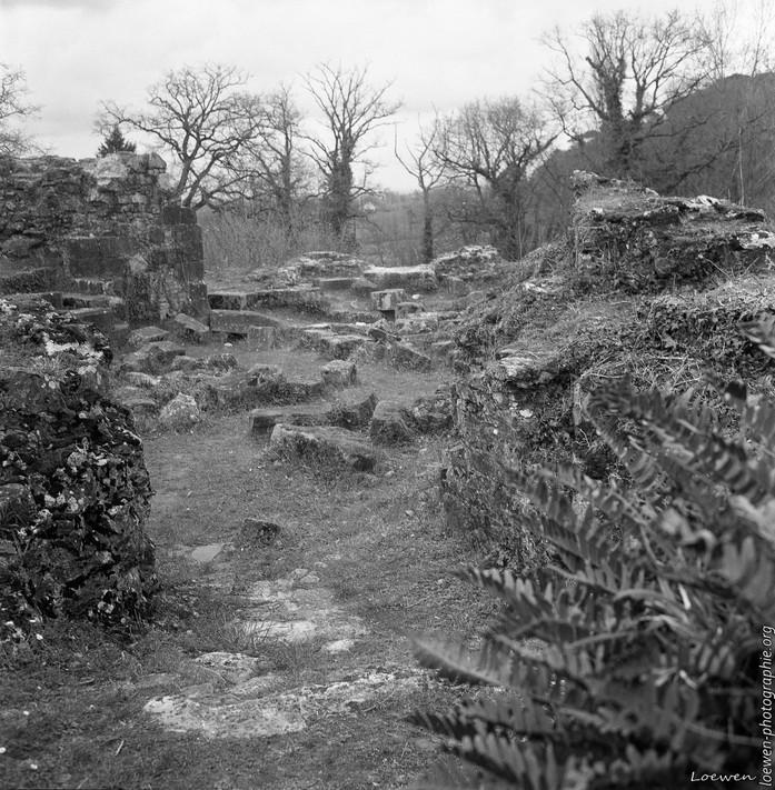 Ruines chateau Saint-Aubin
