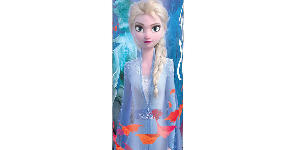 "Frozen 2 8"" Coinbank"