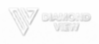 DV-logo-0-horizontal_shadow.png