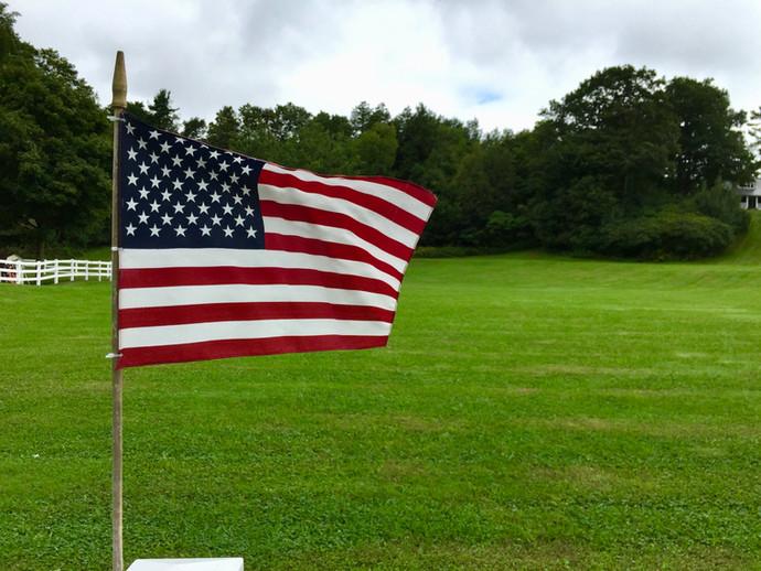 American Meadow