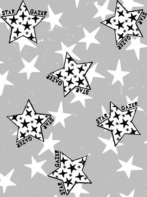 Star Gazer - Mono
