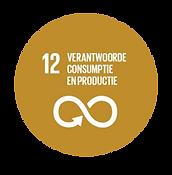 SDG_12_optimized.png