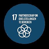 SDG_17_optimized.png