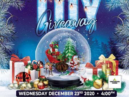Tree House Cares for Kids 4th Annual Toy Giveaway
