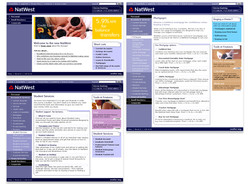02 - NatWest dot com project