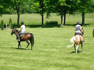 Hack in one of the cross country fields