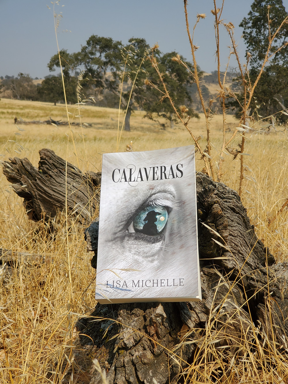 The novel Calaveras by Lisa Michelle on a log surrounded by grass.