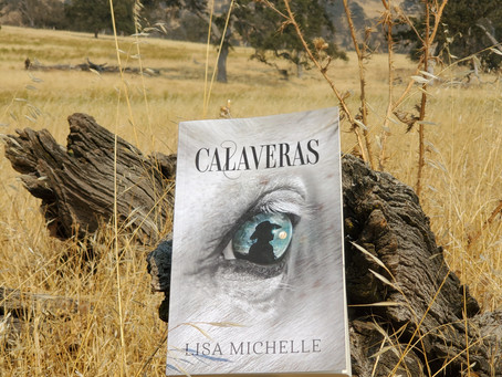 Author Q&A with Lisa Michelle for her new novel CALAVERAS