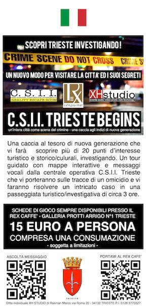 Flyer CSII BEGINS.jpg
