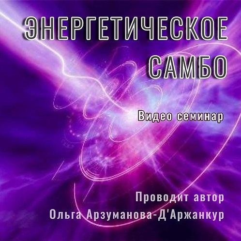 ВИДЕО СЕМИНАР «ЭНЕРГЕТИЧЕСКОЕ САМБО» (ТАРИФ ПРЕМИУМ)