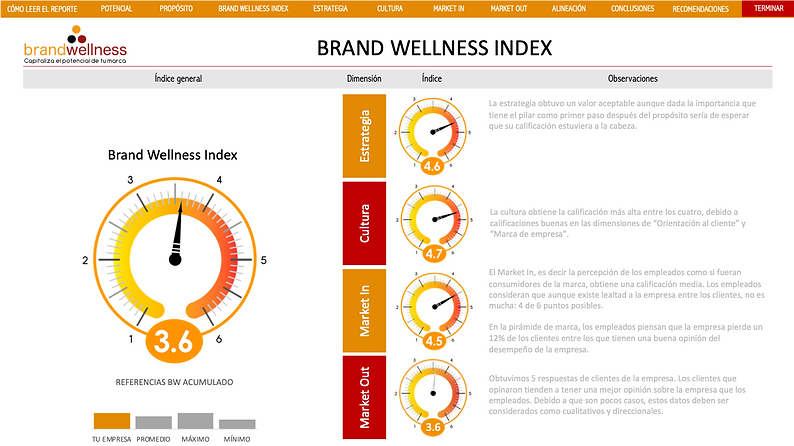 Dashboard Brand Wellness Index.png