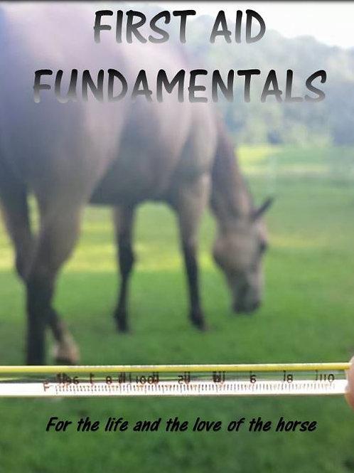 First Aid Fundamentals Manual