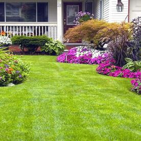 landscaping-01.jpg