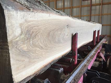 sawmill 1 (1).JPG