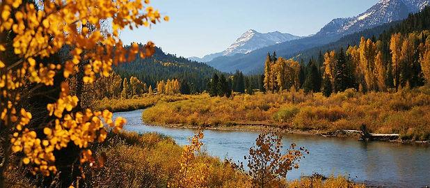 Contact Jake Flood, Orvis endorsed fly fishing guide, Aranksas, Idaho & Wyoming fly fishing.