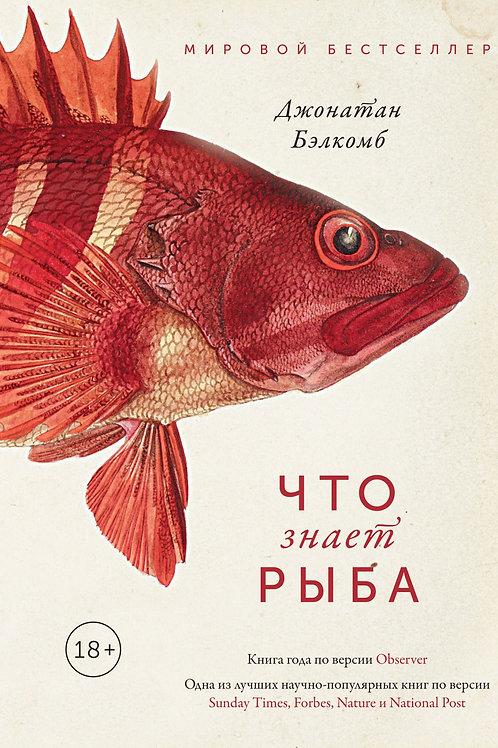 Джонатан Бэлкомб «Что знает рыба. Внутренний мир наших подводных собратьев»