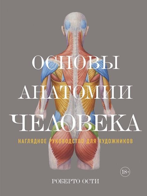 Роберто Ости «Основы анатомии человека. Наглядное руководство для художников»